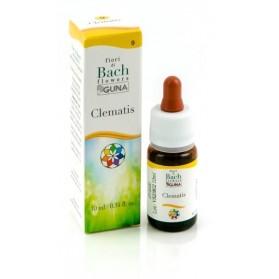 Clematis Guna Gocce 10 ml