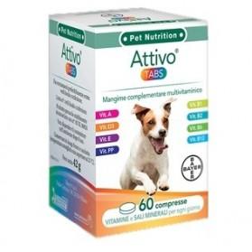 Attivo Tabs 60 Compresse