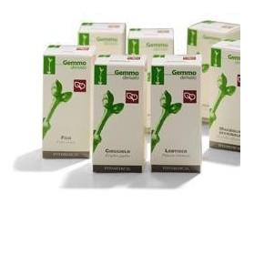 Agnocasto 50ml mg