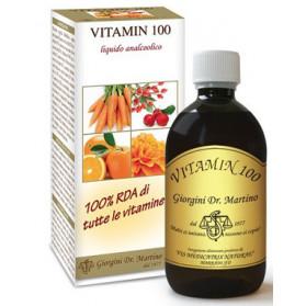 Vitamin 100 Liquido Analcoolico 500 ml